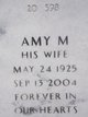 Amy M Green