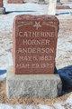 Catherine <I>Horner</I> Anderson