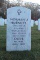 Norman J Burnett