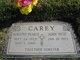 Dorothy Marie <I>Pearce</I> Carey