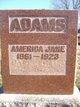 Profile photo:  America Jane Adams