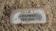 """Sarah Ann """"Sallie"""" <I>Thomas</I> Chapman"""