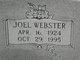 Joel Webster Banes
