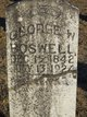George W. Boswell