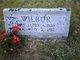 Mary Ellen <I>Dyer</I> Wilbur