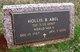 Hollis B. Abel