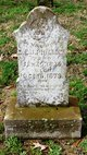 Smithy Elvy Jane <I>Raiford</I> Phillips