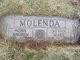 Andrew Molenda