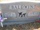 Ovis L Baldwin