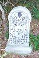 Profile photo:  Alice Gertrude <I>Bray</I> Stowe