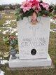 Amy Marie <I>Jones</I> Cravens
