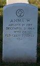 Anna W Fisher