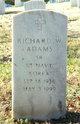 Richard W Adams