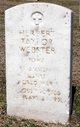 Herbert Taylor Webster