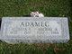 Michael A Adamec