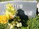 Adele <I>Meyer</I> Abel