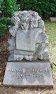 Profile photo:  Agnes E. Hipkins