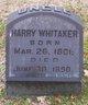 Profile photo:  Harry Whitaker