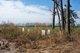 Ichabod Moore Cemetery