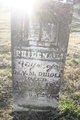 Philena Louisa <I>Collins</I> Diboll