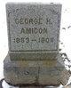 Profile photo:  George H. Amidon