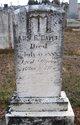 Profile photo:  Ann Rebecca <I>Levy</I> Davis