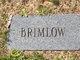 Profile photo:  Brimlow