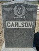 Profile photo:  Adolf Victor Carlson
