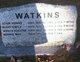 Mary Emily Watkins
