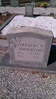 Holbert Wendell Anderson