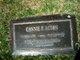 Profile photo:  Connie <I>Caruso</I> Acton