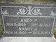 Profile photo:  Andy P Humble