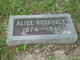 Profile photo:  Alice <I>Harwood</I> Rockholt