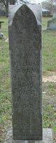 Profile photo:  George Washington Williams