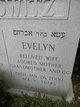 Profile photo:  Evelyn Berkowitz