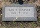 Profile photo:  Ann T. Centner
