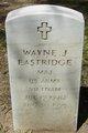 Profile photo:  Wayne J Eastridge
