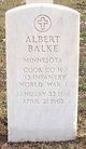 Profile photo:  Albert Balke