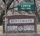 Luverne Margaret <I>Bluhm</I> Bergemann