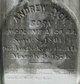 Andrew Jackson Lyon