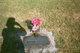 Minnie K <I>Sehnert</I> Revelle