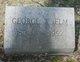 Profile photo:  George Washington Elm