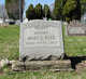 Mary Elizabeth <I>Schneider</I> Reed