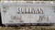 Mary Cecilia <I>Dwyer</I> Sullivan
