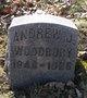 Andrew J. Woodbury