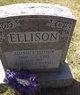 Profile photo:  Alonzo Ellison