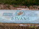 Profile photo:  Easter Bevans