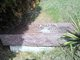 Profile photo:  Adda M. Hodson