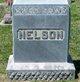 Profile photo:  William Nelson