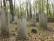 Cuyler - Ledyard Cemetery